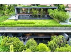 Mulai Ikuti Tren Atap Hijau (Green Roof) Pada Bangunan Anda (Bagian 2)