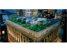 Perbedaan Antara Atap Biasa Dengan Atap Hijau (Green Roof) Bagian 1