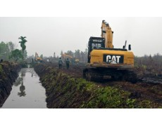 Mengukur Ketinggian Air di Hutan Gambut Dengan U20 Water Level Data Logger